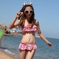 Women's sexy bikini big small push up swimwear skirt swimwear