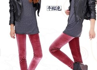 2013 spring new Korean the gold velvet monolayer Leggings increase