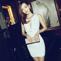 2013 Fashion new Sexy Ladies' evening Dresses,Elegant women's Party dress free shipping CS0495