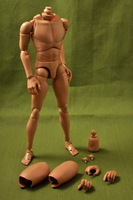 New 1/6 Figure Body custom Made Narrow Shoulder HeadPlay TTL Hot Toys ZB001