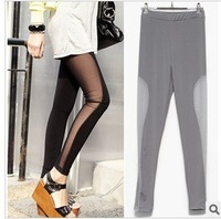 2013 Leggings For Women Ankle Length Legging