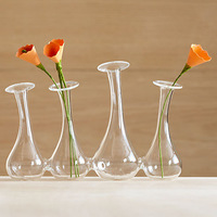 Mxmade fashion one piece glass vase hydroponic home decoration