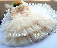 5 pcs/lot,kids tutu dresses, girl party layers dress,girls dancing dress,flower girl dress,AL2002-2
