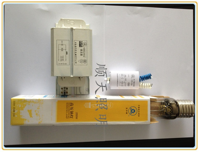free shipping CZB Electrical appliances 1923 sodiumlamp piece set aiconductor ballast(China (Mainland))