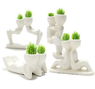 Free shipping!Creative DIY miniature bonsai / office, home ornaments decoration (white lover) grass head doll mini plant