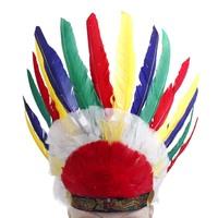 multicolour feather hair accessory