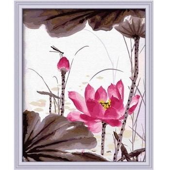Digital colored drawing diy digital oil painting flower decorative painting - short 40 50