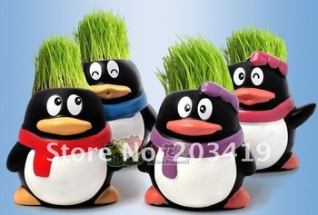 wholesale retail Gift penguin cute Hair man Plant Bonsai Grass Doll Office Mini Plant Fantastic Home Decor pot+seeds 4 design