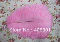 "wholesale FREE SHIPPING 500pcs/lot 10-12"" Ostrich Feather Plume"