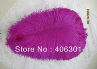 "wholesale FREE SHIPPING 100pcs/lot 12-14"" Ostrich Feather Plume"