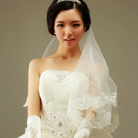 Free shipping 1.5 meters lace decoration net veil