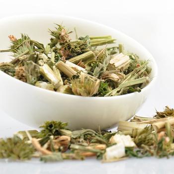 Motherwort tea antioxidant anti-aging regulate menstruation, women tea 50 g Herbal tea free shipping