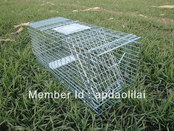 Humane Folding Cat Trap Cage - - dll trap