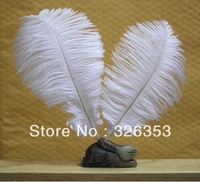 50PCS White color ostrich feathers 6-8 inche FT004