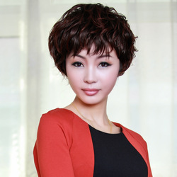Free shipping Hair products wig female kinkiness elegant quinquagenarian fluffy short hair new arrival(China (Mainland))