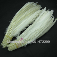Free Shipping wholesale 50pcs/lot Loose White Hard Rod Goose feathers for Feather Pens/Your Crafts TB-1