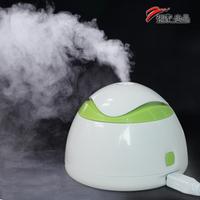 New arrival clean air humidifier mini mute