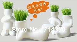 Free shipping! 4pcs/lot fantastic Gift Plant Hair man Grass doll Mini Plant Bonsai/creative office&Home Decor/4 design,wholesale(China (Mainland))