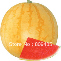 Free Shipping 100 pcs / Pack  yello color special Watermelon Seeds, mature fruit will be 2kg