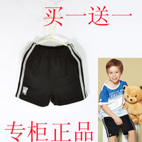 Male child knee-length pants child bodi bear 100% cotton sports pants shorts beach