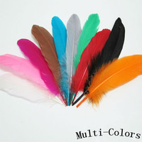 200Pcs/Lot Beautiful 5-7inches/13-18cm Mix Colours Goose Coquilles Feather Trims for sale free shipping
