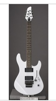 world famous  free shipping new   electric guitars ,musical instrument