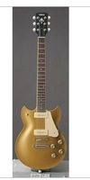 world famous   free shipping  luxury electric guitars