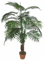 HOT! high quality imitation plants-Areca palm