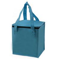 Fresh bag non-woven heat packs cooler bag cooler bag ice pack cold storage bag lunch bag meal package