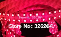 Double line LED Flexible strip lights/ LED Christmas lighting /LED Ribbon lights  3528 SMD 240leds/M waterproof IP65 5M/Roll