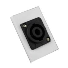 popular speaker wall plate