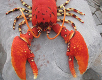 Large 60cm lobster plush toy red doll pillow 60cm birthday gift