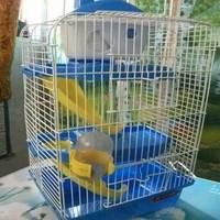Luxury double slide hamster cage 23 times . 17 times . punner 38 belt water bottle