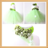 lime Fairytale Princess Flower Girl Tutu Dress and Headband Set wholesale retail vintage girl tutu dress 2pcs/set free shipping