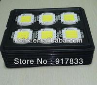 Energy Saving Product Super brightness Epistar 60W COB LED Power Module