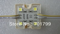 COOL WHITE 5050 SMD LED module,DC12V,20pcs a string