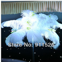 "10PCS 28-30"" Ostrich Feather free shipping,70-75cm ostrich male wing feather,wedding feather center piece,A grade"