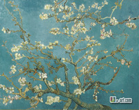 Canvas Prints (Blossom of the Almond Tree) by Van Gogh canvas art famous oil painting printing on canvas for room Static-243