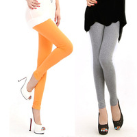 2pcs free shipping Fashion leg warmer  colorful trosers legging plus size legging for women