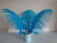 Free Shipping by EMS 800pcs/lot 12-13 inches Dyed Blue Ostrich Feather Plume for wedding centerpiece