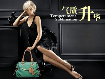 2012 women bags,Lady Girls Hobo,Checker Board,Fashion handbags,Free shipping.BAG00301
