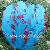 Hot Selling ! 20pcs/lot Sky blue /red nagorie feather pad ,Natural curly feather pad for Decoration /wholesale