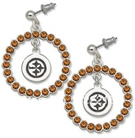 Free shipping 5pair a lot fashion silver plated Pittsburgh Steelers drop sports circle earring