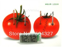 Free shipping 5pcs/lot SCIENCE MUSEUM Digital Potato Clock Green Science Vegetable Power with Retail Package