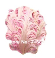 2014 new style wholesale free shipping 10pcs Apricot on pink Goose Feather Pads diy for hair accessories