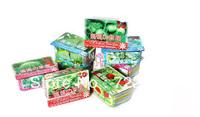 Hot sale / Creative Gift Plant can pot flower Office Mini Fantastic DIY Home Decoration mini Orchard