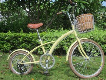 Size wheel fashion vintage transmission for bicycle