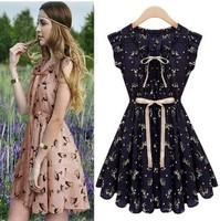 Lovely women chiffon dresses V neck sleeveless fashion print dress A line Dress 2 colors