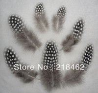 Free shipping! 400pcs/lot wholesale Pearl chicken feathers approx 5-8 cm beautiful gull feather plume for decoration accessories