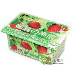 Strawberry mini plant fruit strawberry(China (Mainland))